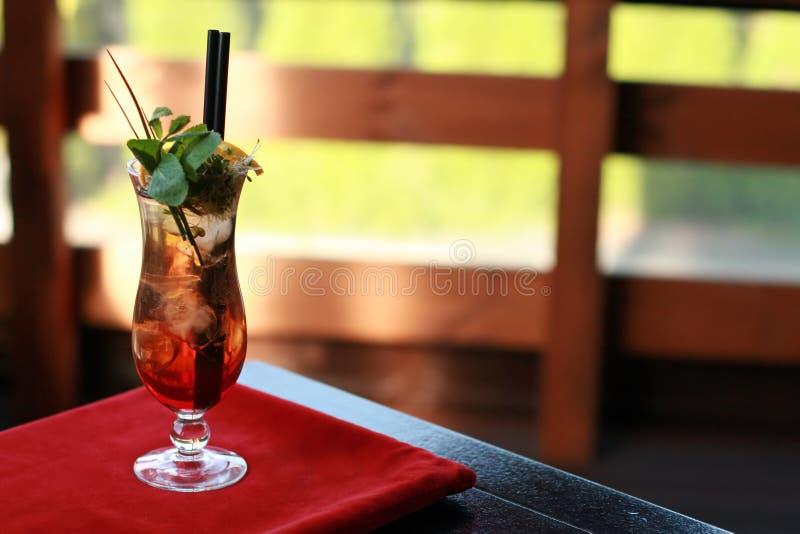 Vodka asiática con la bebida del hielo imagen de archivo libre de regalías
