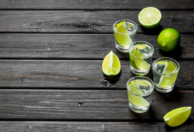 Vodka i skivor för ett skjutit exponeringsglas och limefrukt arkivfoto