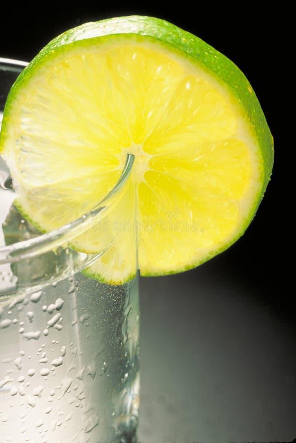 Vodka Lemon royalty free stock photo