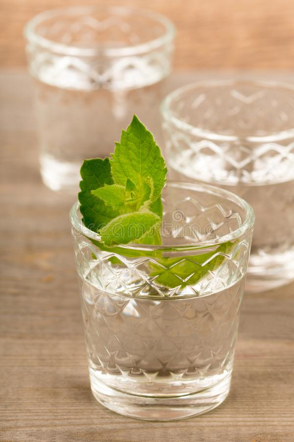 Vodka with mint in shot glasses on rustic wooden table royalty free stock photo