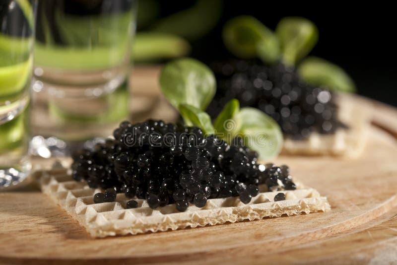 Vodka y caviar negro fotografía de archivo libre de regalías