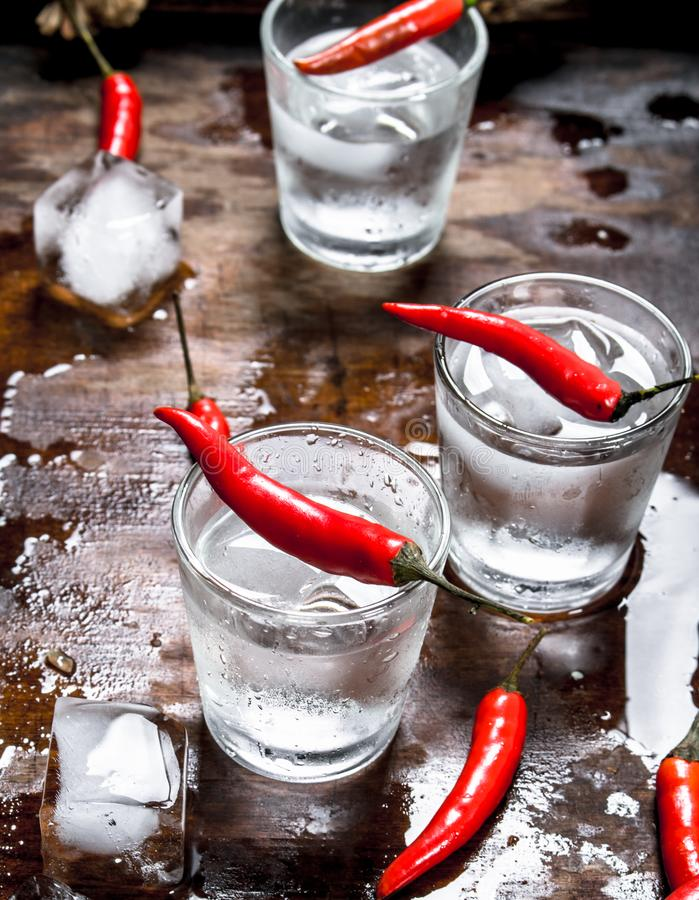 Vodkaskott med chilipeppar royaltyfri fotografi