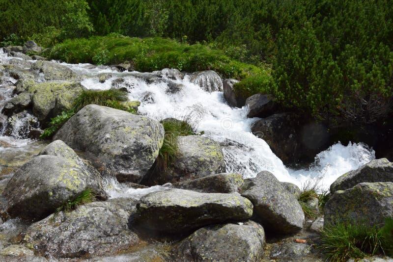 Vodopad Skok Tatry, Slovakia. Vodopad Skok Waterfall in Tatry, Slovakia, tourist attraction stock photography