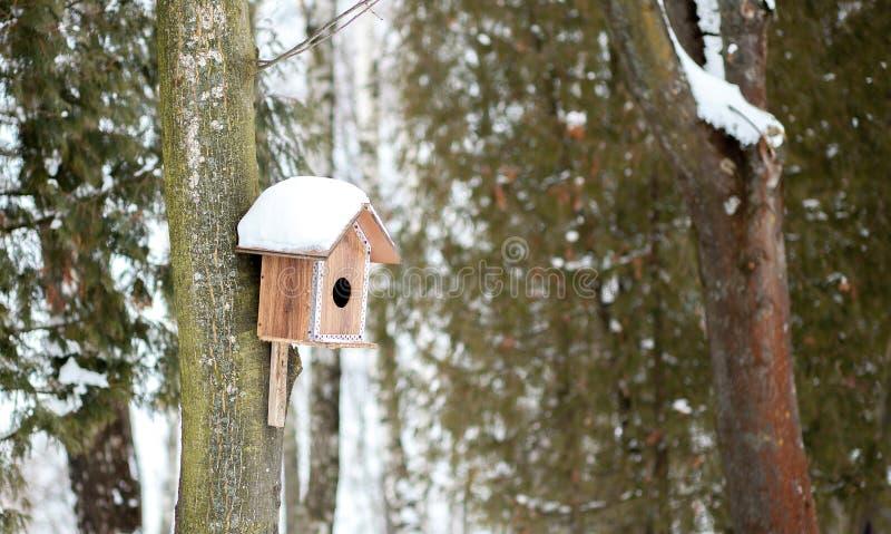 Voeder voor vogels in sneeuw in de winterbos stock fotografie