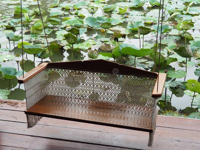 Voederbakzitting naast de lotusbloemvijver royalty-vrije stock afbeelding