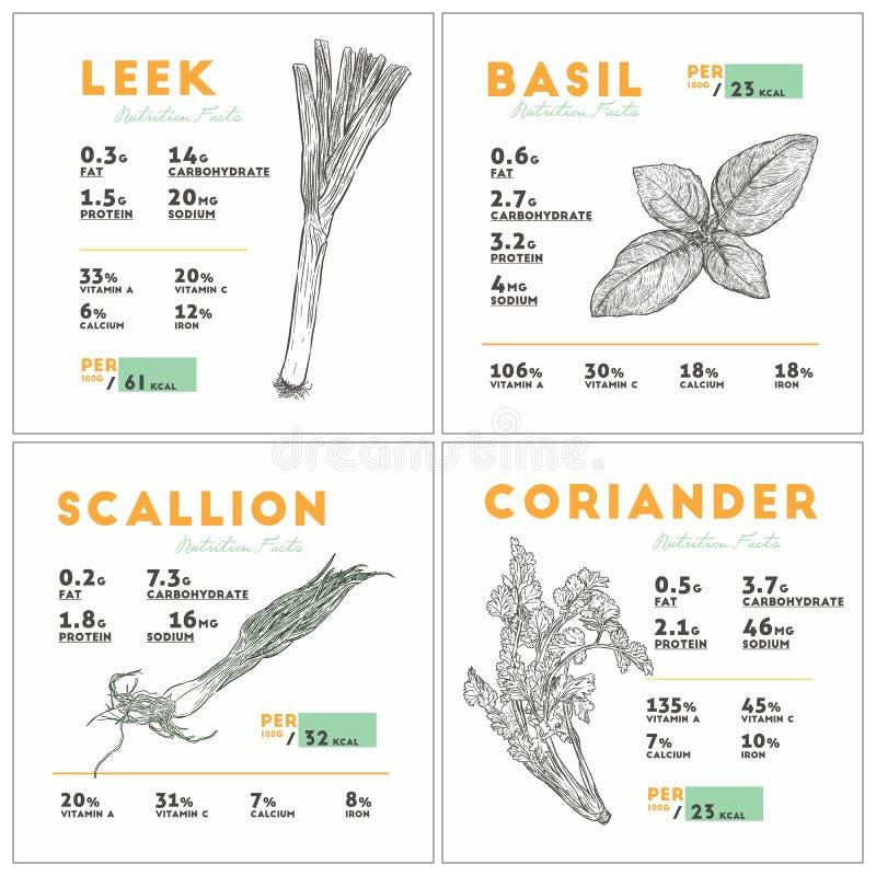 Voedingsfeiten van prei, basilicum, sjalot en koriander royalty-vrije illustratie