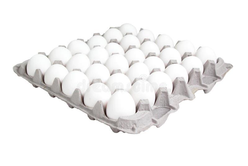 Download Voedsel: 24 Het Karton Van De Telling Van Eieren Stock Foto - Afbeelding bestaande uit karton, eieren: 37152