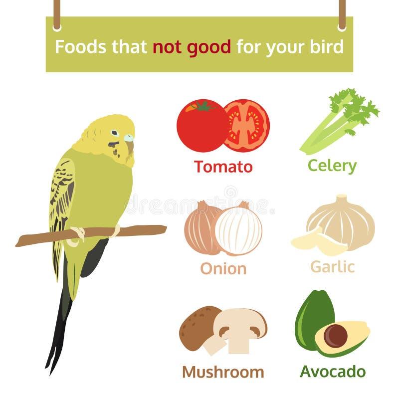 Voedsel dat niet goed voor u de grafische illustratie van de vogelinformatie Voedsel royalty-vrije illustratie