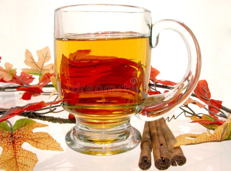 Download Voedsel: De Hete Cider Van De Appel Stock Afbeelding - Afbeelding bestaande uit kaneel, heet: 33385