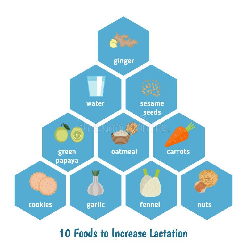 Voedsel om lactatie te verhogen royalty-vrije illustratie