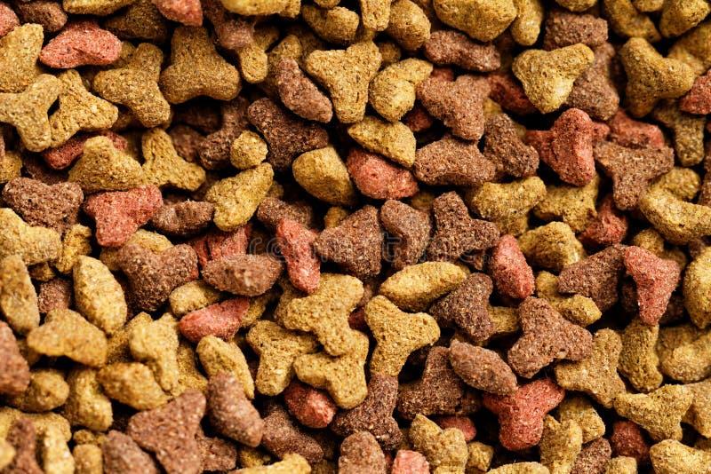 Voedsel voor huisdieren stock foto