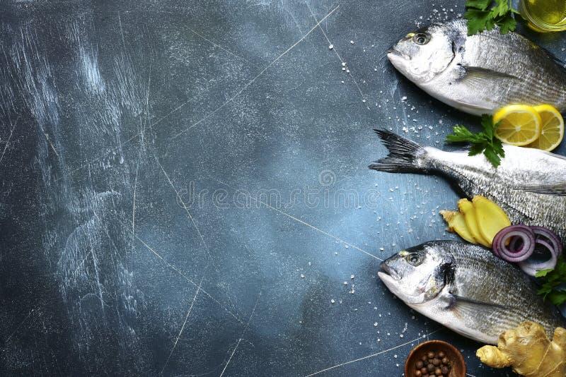 Voedselachtergrond met verse ruwe doradovissen met ingrediënten voor het maken op een donkerblauwe lei, een steen of een concrete stock afbeelding