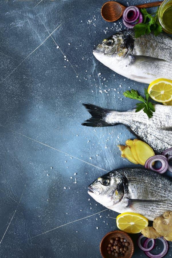 Voedselachtergrond met verse ruwe doradovissen met ingrediënten voor het maken op een donkerblauwe lei, een steen of een concrete stock afbeeldingen