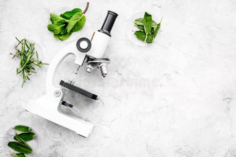 Voedselanalyse Pesticiden vrije groenten Kruidenrozemarijn, munt dichtbij microscoop op de grijze ruimte van het achtergrond hoog royalty-vrije stock fotografie
