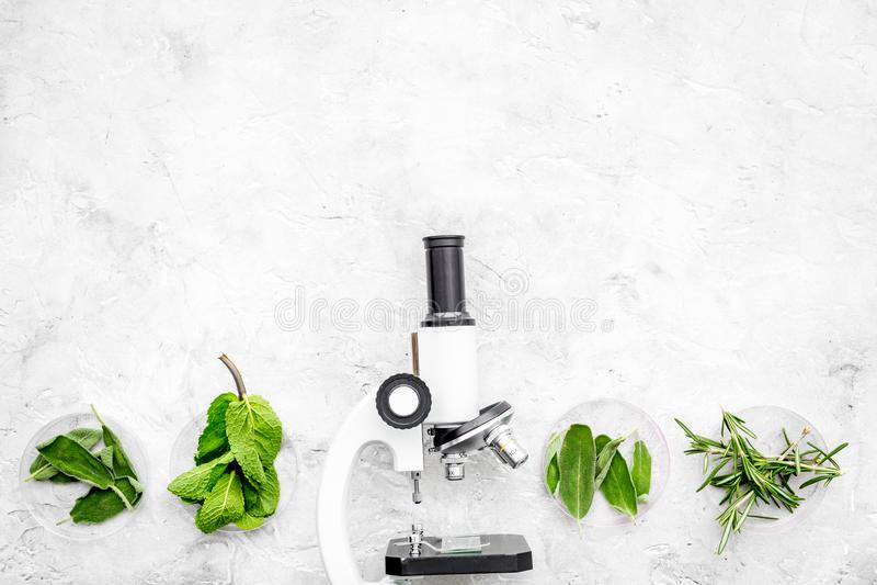 Voedselanalyse Pesticiden vrije groenten Kruidenrozemarijn, munt dichtbij microscoop op de grijze ruimte van het achtergrond hoog royalty-vrije stock foto