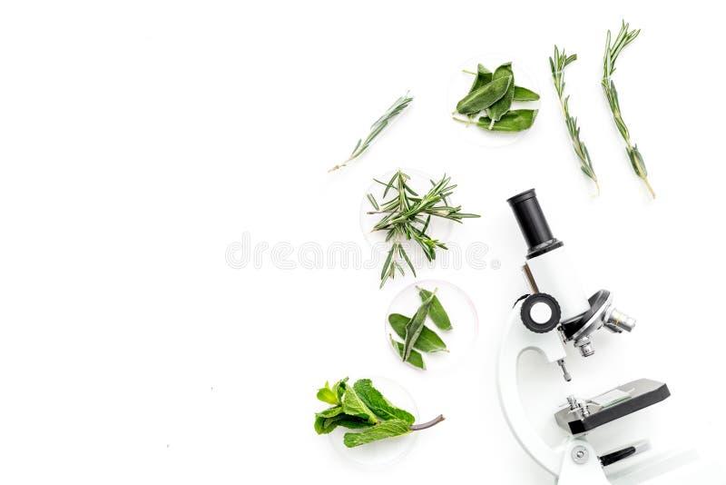 Voedselanalyse Pesticiden vrije groenten Kruidenrozemarijn, munt dichtbij microscoop op de witte ruimte van het achtergrond hoogs stock foto