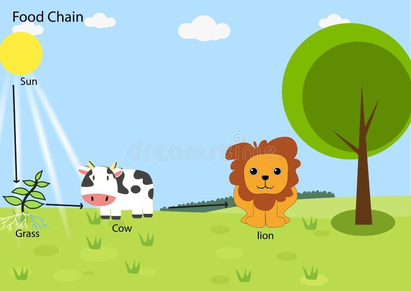 Voedselketen vector illustratie