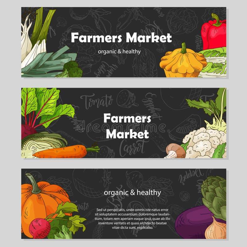 Voedselontwerp met groente Hand getrokken schets van biet en daikon Organisch vers product voor kaart of afficheontwerp voor royalty-vrije illustratie