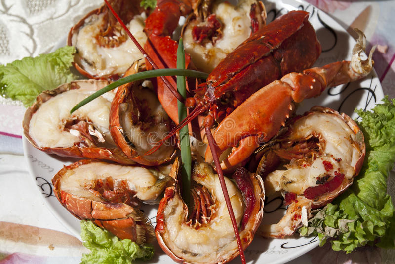 Voedselplaat stock fotografie