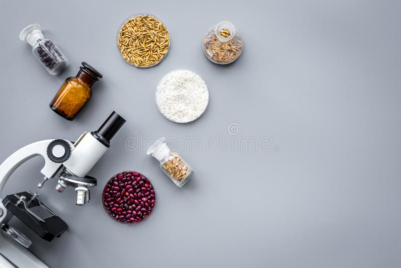Voedselveiligheid Tarwe, rijst en rode bonen dichtbij microscoop op grijze hoogste mening als achtergrond copyspace stock afbeeldingen