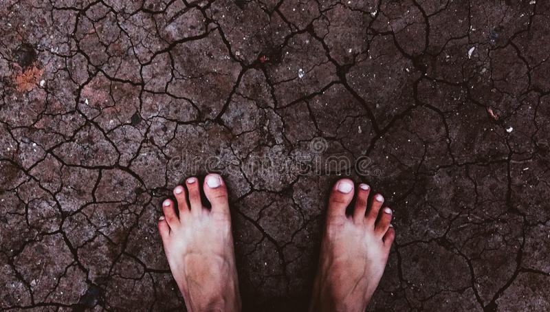 voet royalty-vrije stock foto's