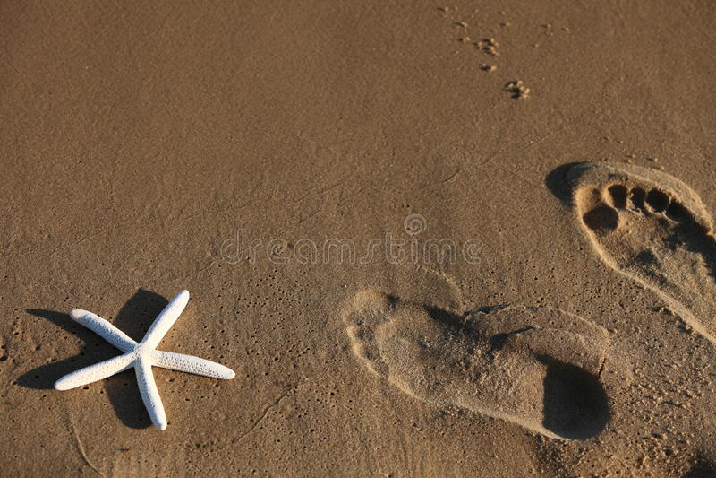 Voet en zeesterdrukken op een zandig strand royalty-vrije stock foto