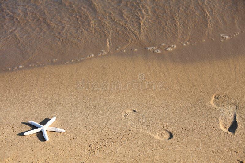 Voet en zeesterdrukken op een zandig strand royalty-vrije stock afbeeldingen