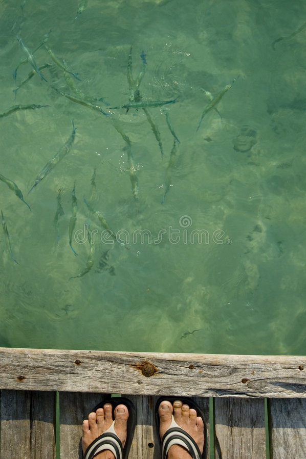 Voet naast houten pier stock foto