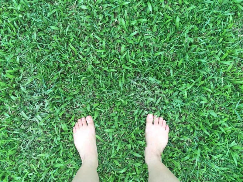 Voet op Gras stock foto's