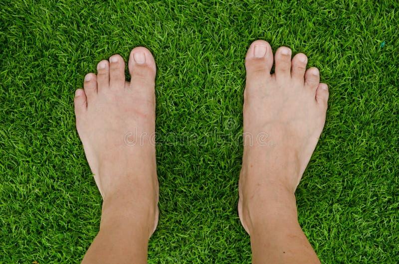 Voet over groen gras stock afbeelding