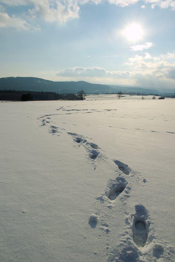 Voet in sneeuw stock fotografie
