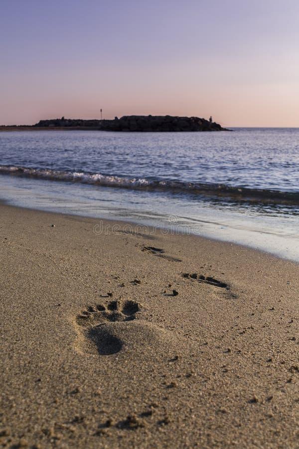 Voetafdruk bij het strand royalty-vrije stock afbeelding
