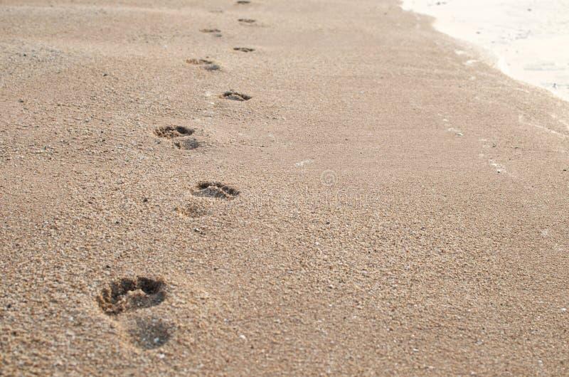 Voetafdruk op zand royalty-vrije stock afbeeldingen