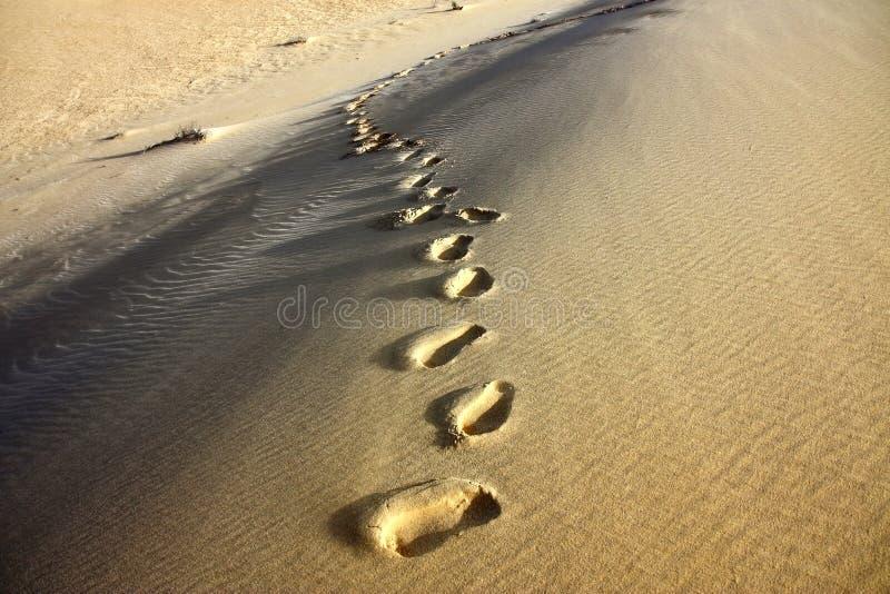 Voetafdruk in zand van de Sahara woestijn royalty-vrije stock fotografie