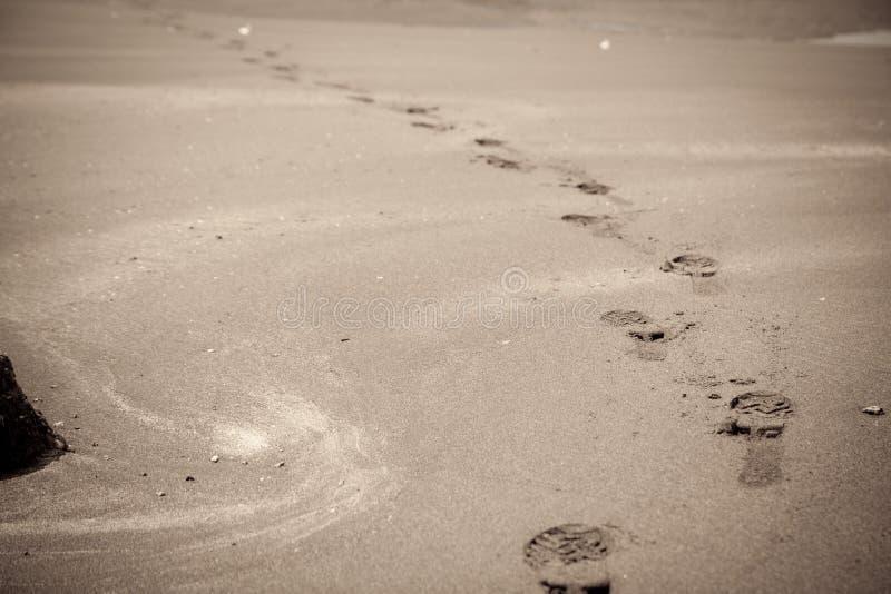 Voetafdruk in zandig strand stock foto's