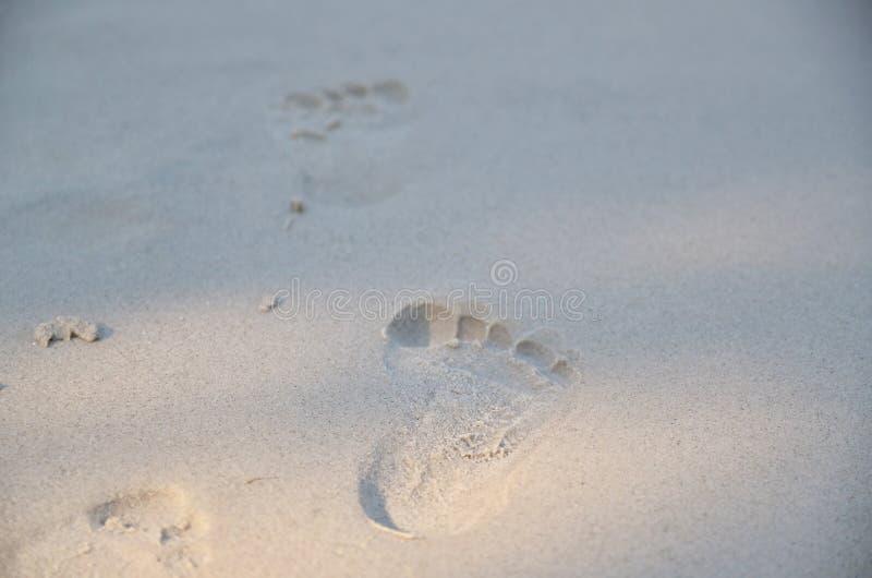 voetafdrukken stock afbeeldingen