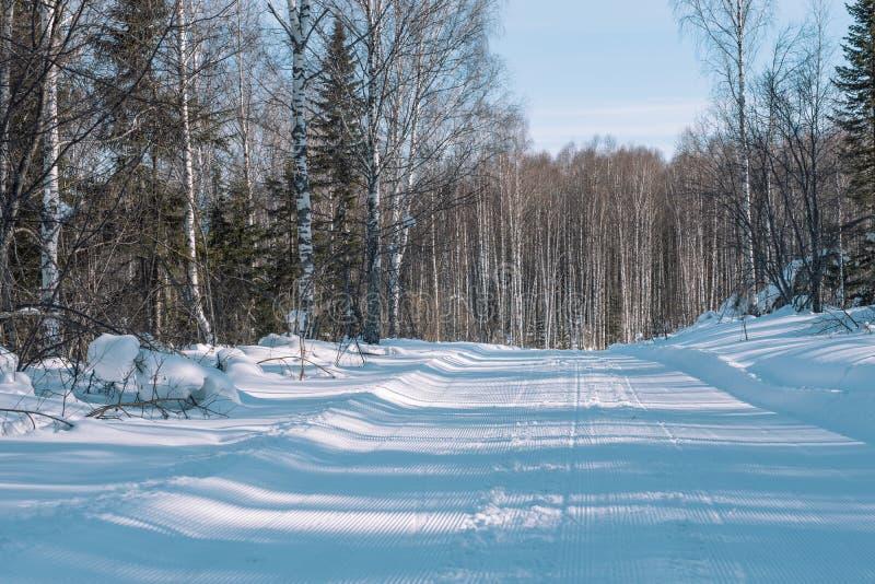 Voetafdrukken in de sneeuw van de auto De weg aan het bos de Winterlandschap De winter in Siberië stock fotografie