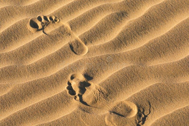 Voetafdrukken in het zand Vroeg Ochtendzonlicht door Zandduinen en Bergen in het Vlakke Duin van Mesquite, het Nationale Park van stock afbeelding