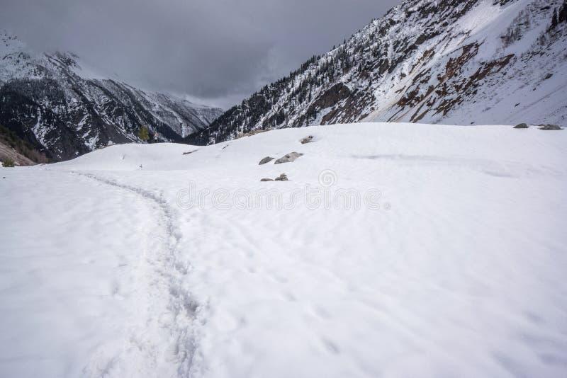 Voetafdrukken naast de bergen van de Kaukasus stock afbeelding
