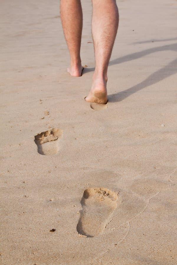 Voetafdrukken in nat zand stock afbeeldingen
