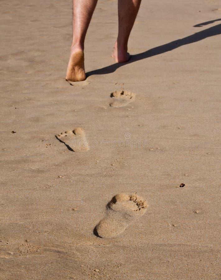 Voetafdrukken in nat zand stock foto's