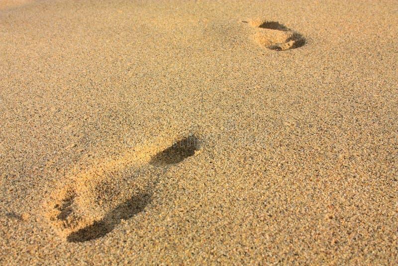 Voetafdrukken op een strand. Tayrona, Colombia royalty-vrije stock afbeeldingen