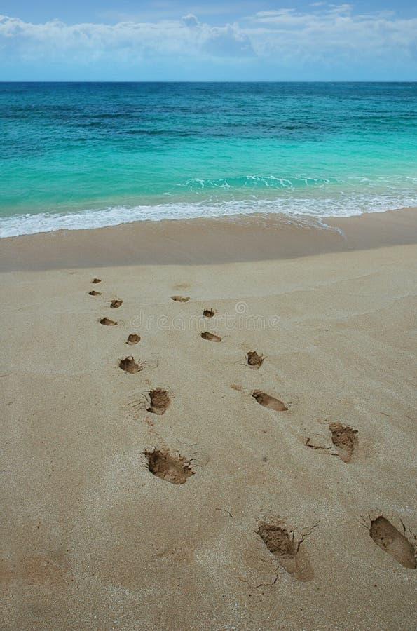 Voetafdrukken op een tropisch strand. stock foto