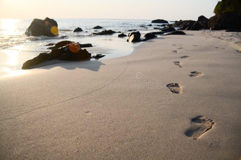 Voetafdrukken op het strand royalty-vrije stock afbeelding