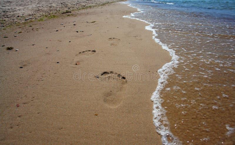 Voetafdrukken op het strandzand. stock foto's