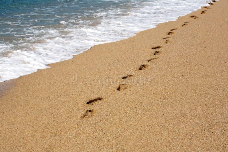 Voetafdrukken op het zand stock foto