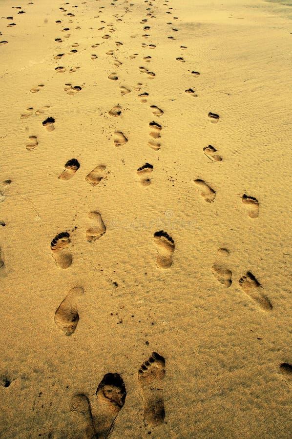 Voetafdrukken op het zand stock fotografie