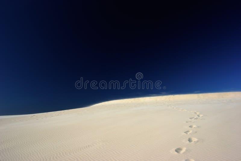 Voetafdrukken op woestijn stock foto's