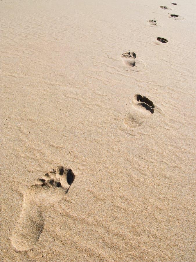 Voetafdrukken op zand stock foto's