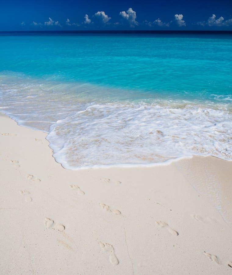 Voetafdrukken op zandig strand stock afbeeldingen